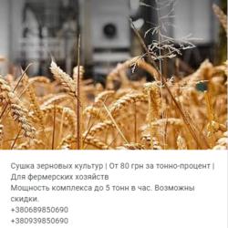 сушка зерновых  бобовых и масличных сельскохозяйственных культур