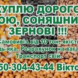 куплю дорого сою  соняшник  зернові!!!