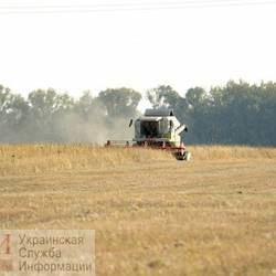 Odessa farmers ask to declare an emergency: drought destroyed crops