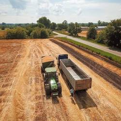 Activity of forward sales of harvest 2020 is significantly lower than last year - opinion
