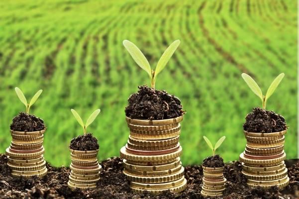 Розширено програму державної підтримки для агросектору на 2021 рік