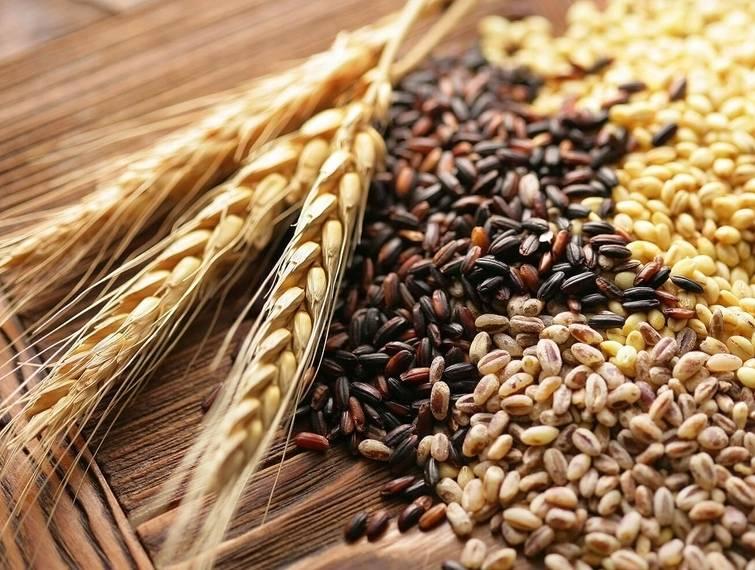 Зернові – одна з головних категорій експорту в Україні з початку 2021 року