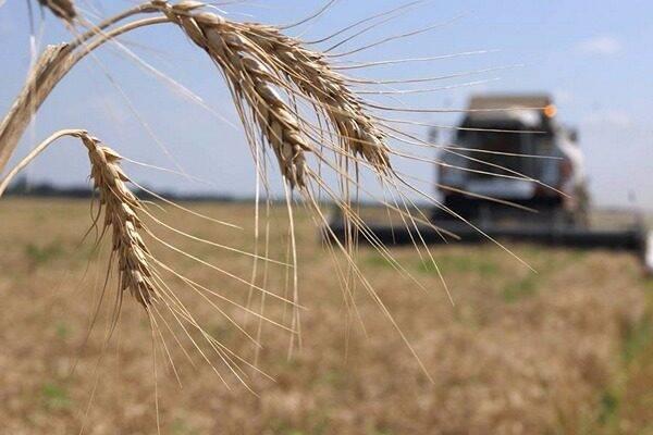 Програма підтримки аграріїв буде розширена для купівлі сільськогосподарських земель