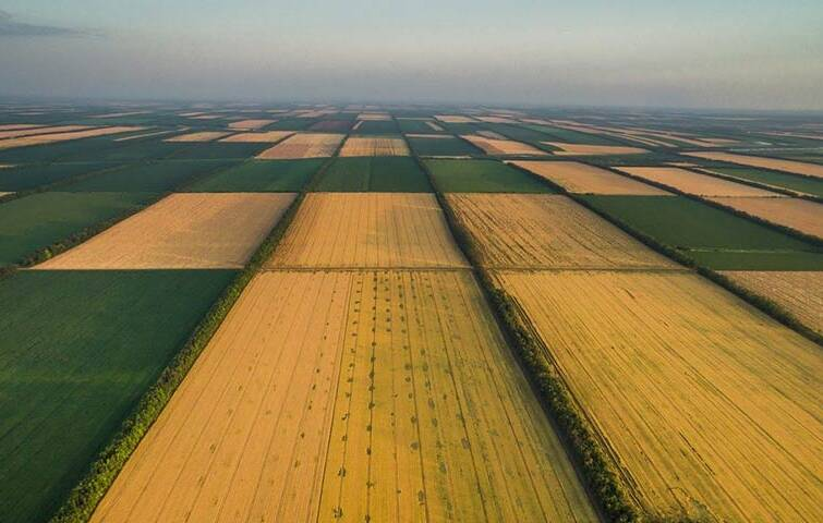 В Украине будет внедрена система контроля земельных операций