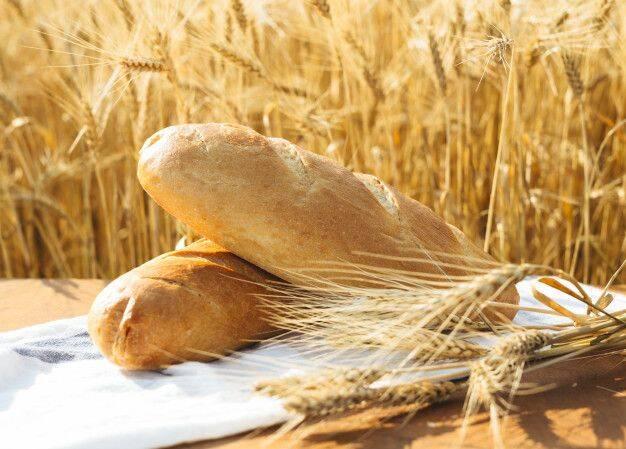 У 2021-22 роках очікується рекордний обсяг споживання зерна на планеті