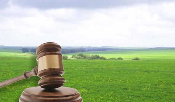 В Україні запустять систему електронних торгів для земельних ділянок