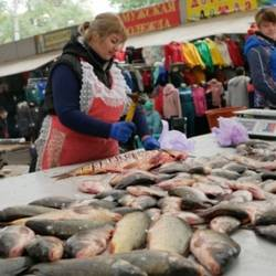 Ministry of Health allowed to open food markets