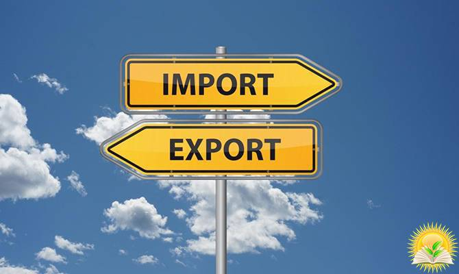 Ukraine Will Revise Export Quotas for the Supply of Agricultural Products to the EU
